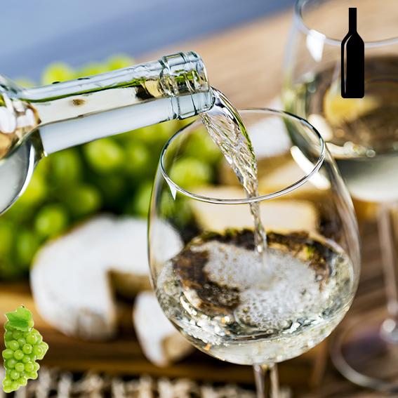 Los mejores vinos espumosos, características, elaboración, historia, beneficios y más
