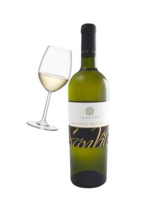 vino blanco Verdicchio di Matelica