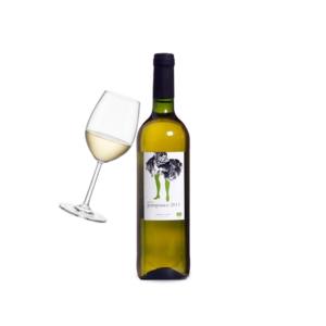 Esencia Rural Pampaneo Airen Vino de la Tierra de Castilla, Spain