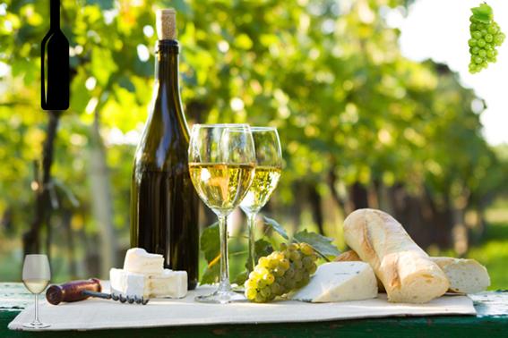 Las más famosos vinos blancos Airén