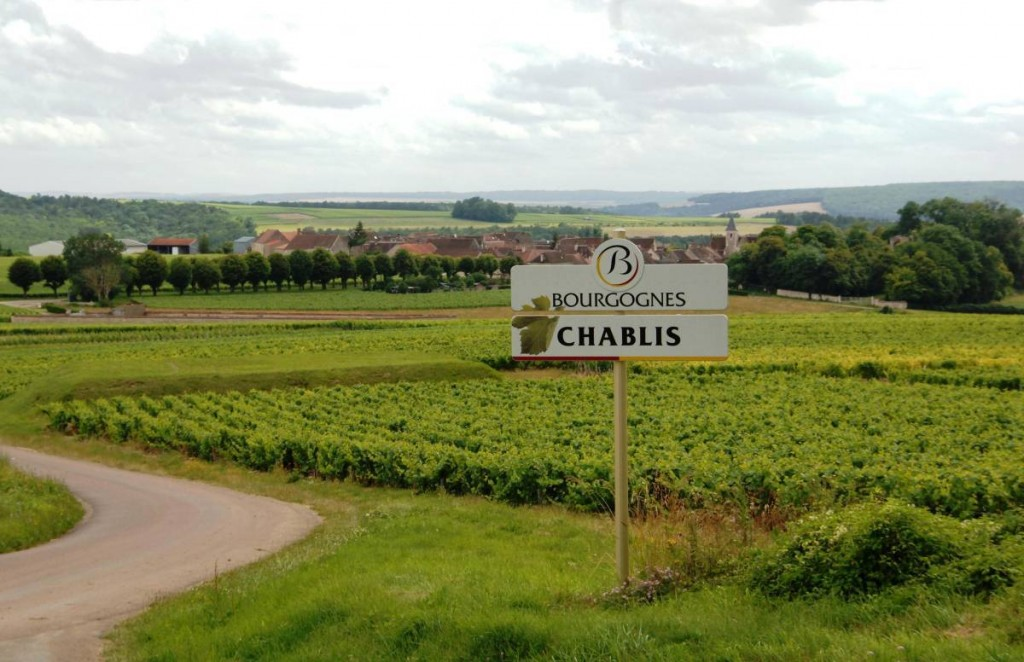 chablis-the-veintidós