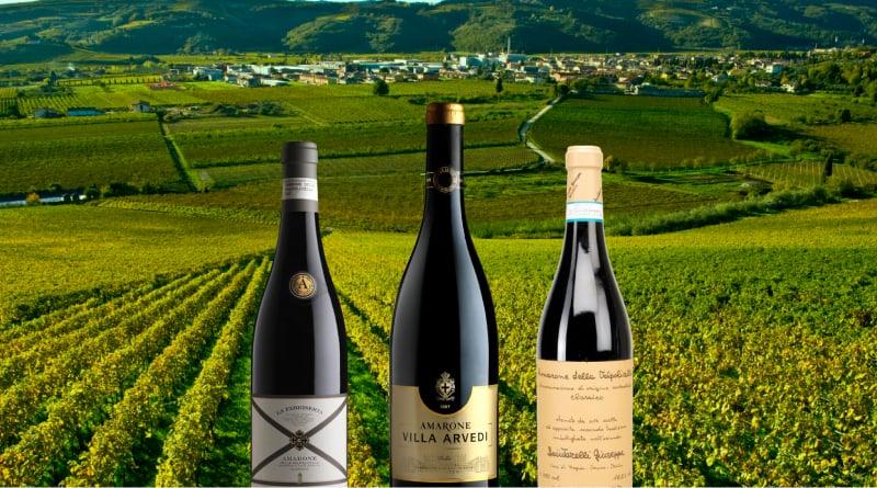5f9302c3ff398eba316ce640 valpolicella wine 2